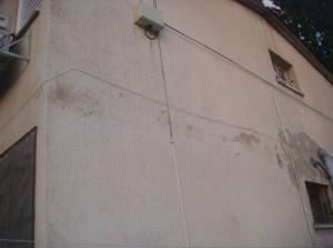 עובש בקירות הבניין